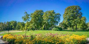 Thorsten Sassen Garten- und Landschaftsbau